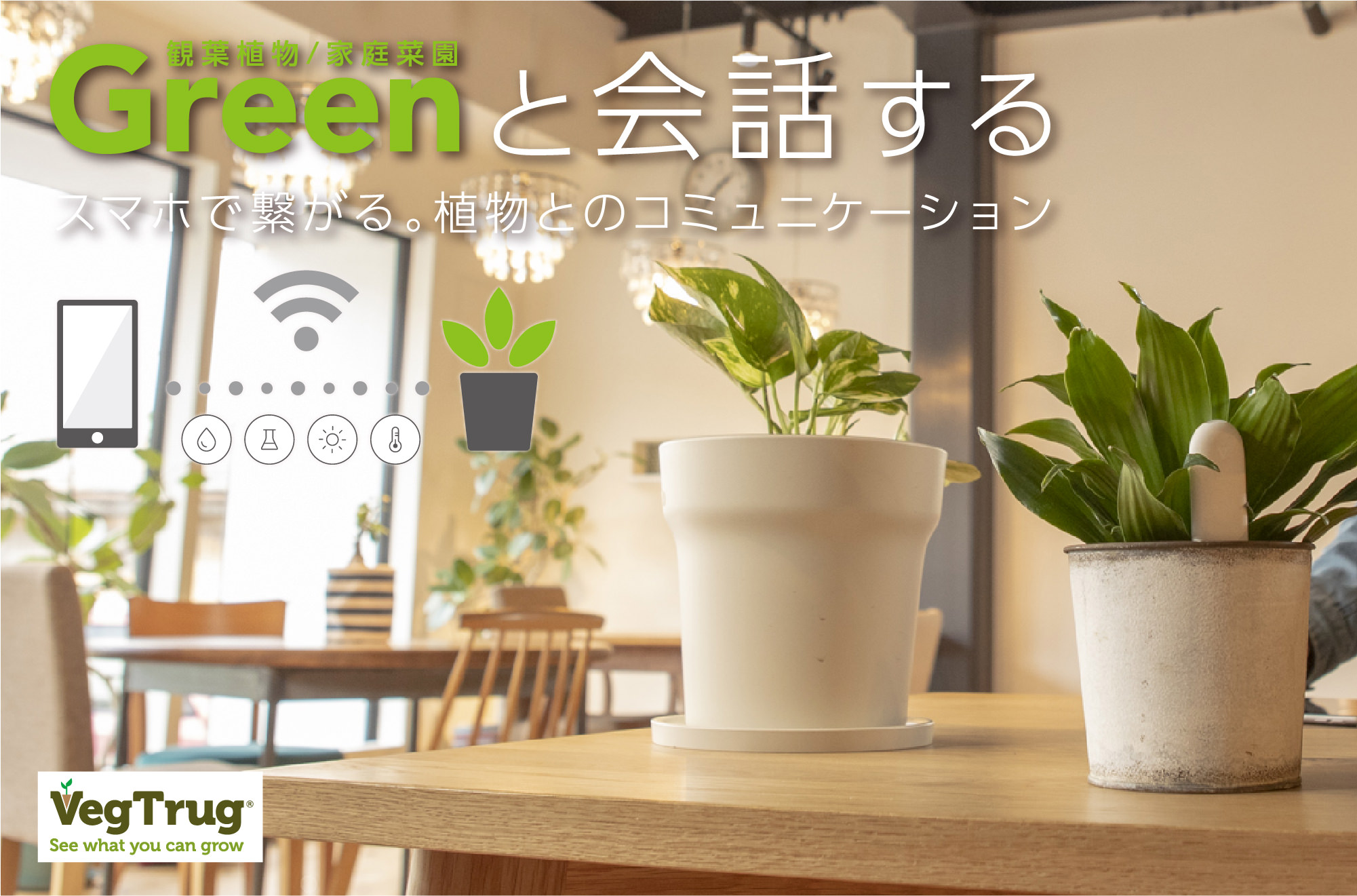 Green(観葉植物/家庭菜園)と会話する スマホで繋がる。植物とのコミュニケーション VegTrug See what you can grow